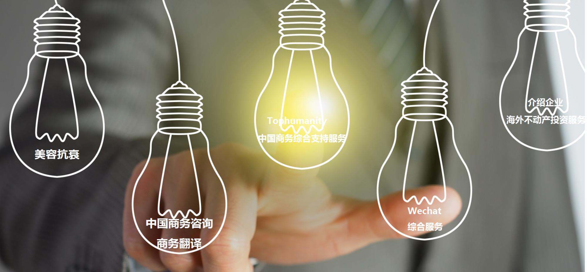 中国商务综合支持服务